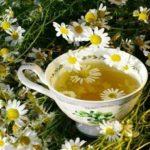 Польза чая из ромашки