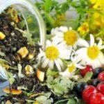 Травяной сбор помогает избавиться от кашля и укрепить иммунитет — Часть 1