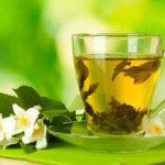 Польза и вред зеленого чая с жасмином